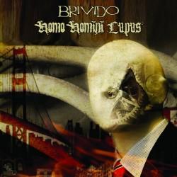 Brivido / Public Disgrace - Split (LP)